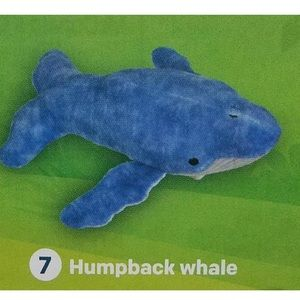 National Geographic Kids #7 Humpback Whale